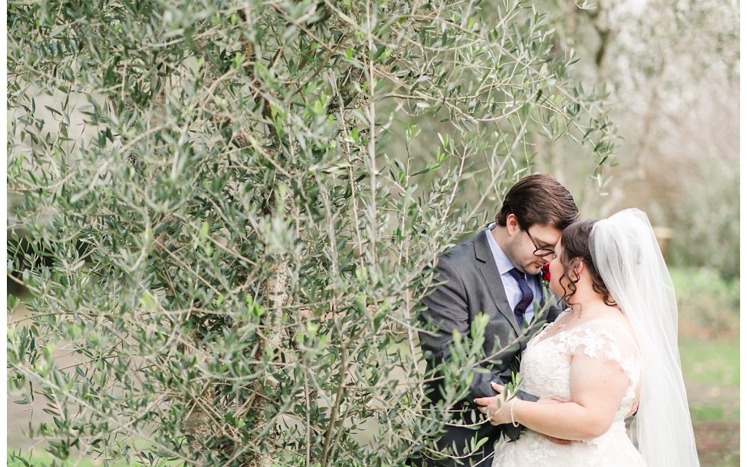 Julia & Michael's Markovina Wedding